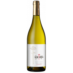 San Felipe Barrel Select Chardonnay 75cl