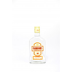 Gordon's Dry Gin 35CL