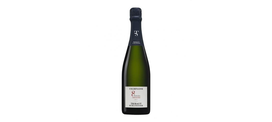 Mousserende Wijn Kopen? Cava Champagne Prosecco Goedkoop Bestellen?